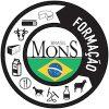 Mons Formação